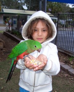 Maddy & King Parrot